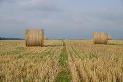 Höstfält med sugrörbaler Arkivbild