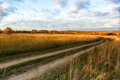 Höstfält på solnedgången hösten colors guld- Fotografering för Bildbyråer