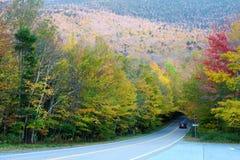 Höstfärgändring i Stowe, Vermont Royaltyfri Fotografi