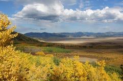Höstfärger av den södra Parkhandfatet Arkivfoton