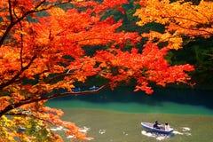 Höstfärger i Kyoto Royaltyfri Bild