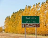 Höstfärger nära Oakville, Manitoba royaltyfria foton