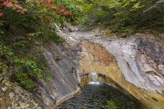 Höstfärger runt om en vattenfall Royaltyfri Bild