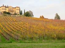 Höstfärglandskap Conegliano Italien royaltyfria bilder