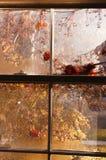 höstfönster royaltyfria foton