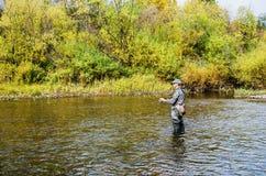 Höstfiske på en liten flod royaltyfri bild
