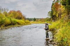 Höstfiske på en liten flod royaltyfria foton