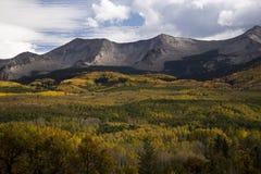 Höstfoilagen nära krönade butten Colorado på det Kebler passerandet Rd Royaltyfri Fotografi