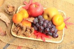 Höstfrukt, höst av bilden Arkivbilder