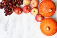 Höstfrukt i trädgården Arkivfoto