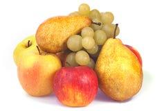 höstfrukter arkivfoton