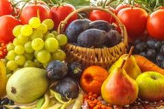 Höstfrukter och grönsaker Arkivfoto