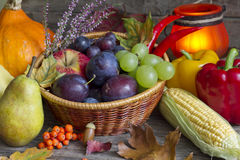 Höstfrukter och grönsaker gör sammandrag stilleben Arkivbilder