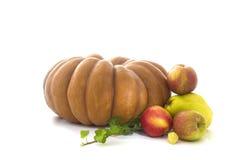 Höstfrukter och grönsaksamling arkivfoto
