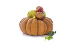 Höstfrukter och grönsaksamling royaltyfri foto