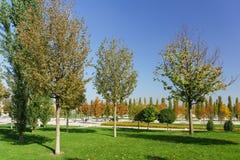Höstgränder av staden parkerar av kultur och vilar Krasnodar royaltyfri bild