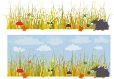 höstgräs Arkivfoto
