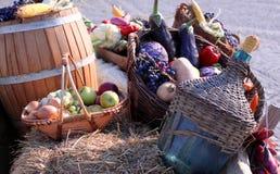 Höstgrönsaker Royaltyfria Foton