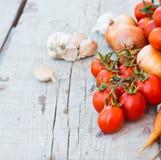 Höstgrönsaker på tabellen - tomater, peppar, aubergine, zu Royaltyfri Fotografi
