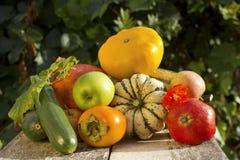 Höstgrönsaksamling royaltyfri foto