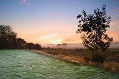 Höstgryningliggande över frostiga dimmiga fält Arkivbilder