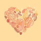 hösthjärtaleaves Royaltyfri Fotografi