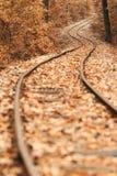 höstjärnväg Royaltyfria Bilder