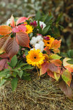 Höstlövverk med den decotative apelsinen blommar på höstack arkivbilder