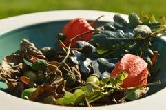 Höstlövverk och frukter i bunke royaltyfri foto
