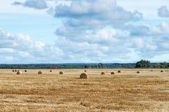 Höstlandskap av fältet med baler av hö Royaltyfria Foton