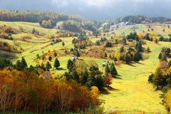 Höstlandskap av färgrika skogar i en dal i Shiga Kogen arkivfoton