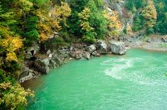 Höstlandskap av floden i skog Royaltyfri Bild