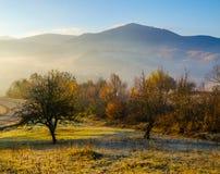 Höstlandskap, blåa berg i bakgrunden, brunt och ye Royaltyfri Foto