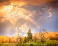 Höstlandskap. Härlig guld- nedgång i härligt trä. arkivfoto