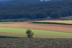 Höstlandskap i Bayern Arkivfoto