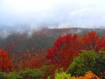 Höstlandskap i bergen Arkivbild