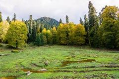 Höstlandskap i bergen av Abchazien Fotografering för Bildbyråer