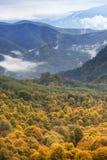 Höstlandskap i bergen av Lago-Naki Arkivfoto