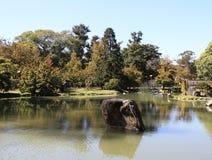 Höstlandskap i en japansk trädgård Arkivbilder