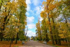 Höstlandskap i St Petersburg, Ryssland Royaltyfri Fotografi