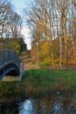 Höstlandskap med en bro i en parkera royaltyfri bild