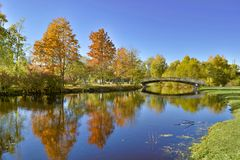 Höstlandskap med flodbron och guld- trädreflexion fotografering för bildbyråer