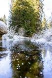 Höstlandskap med floden i frostig dag Royaltyfri Bild