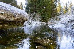 Höstlandskap med floden i frostig dag Royaltyfria Bilder