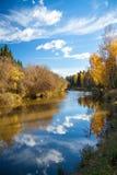 Höstlandskap med floden, skogen och den blåa himlen Arkivfoton