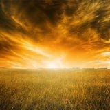 Höstlandskap med orange gräs och himmel under solnedgång Arkivbilder