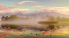 Höstlandskap och dimmig sjö Royaltyfri Bild