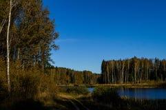 Höstlandskap på en sjö i centrala Ryssland Royaltyfri Fotografi