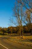 Höstlandskap, vägen som leder in i bergen, blå moun Royaltyfri Fotografi