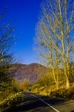 Höstlandskap, vägen som leder in i bergen, blå moun Royaltyfria Foton